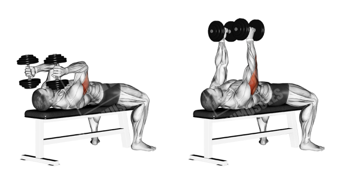 dumbbell-lying-triceps-extension
