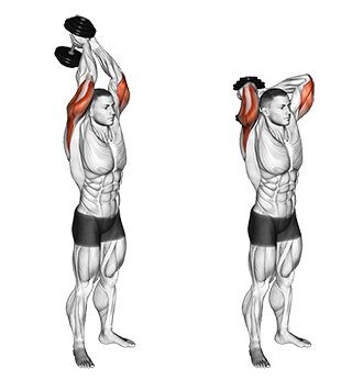 Standing+Two+Arm+Overhead+Dumbbell+Triceps+Extensions